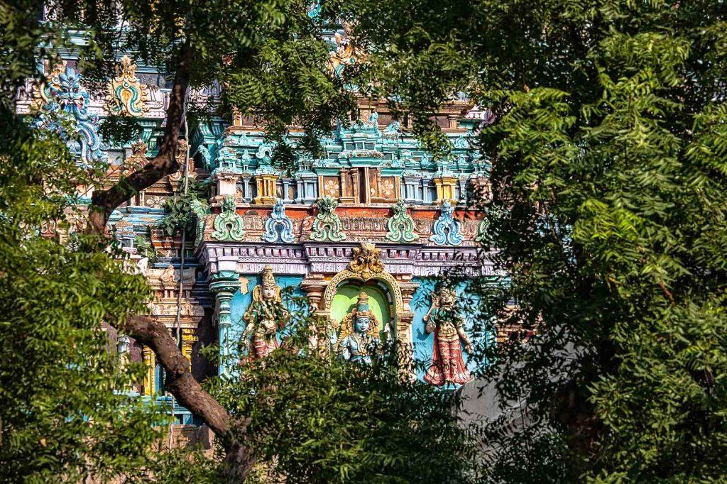 Kerala - Foto Maurizio Cantergiani