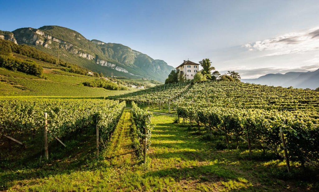 Vinum Hotels Südtirol - EOS - Florian Andergassen
