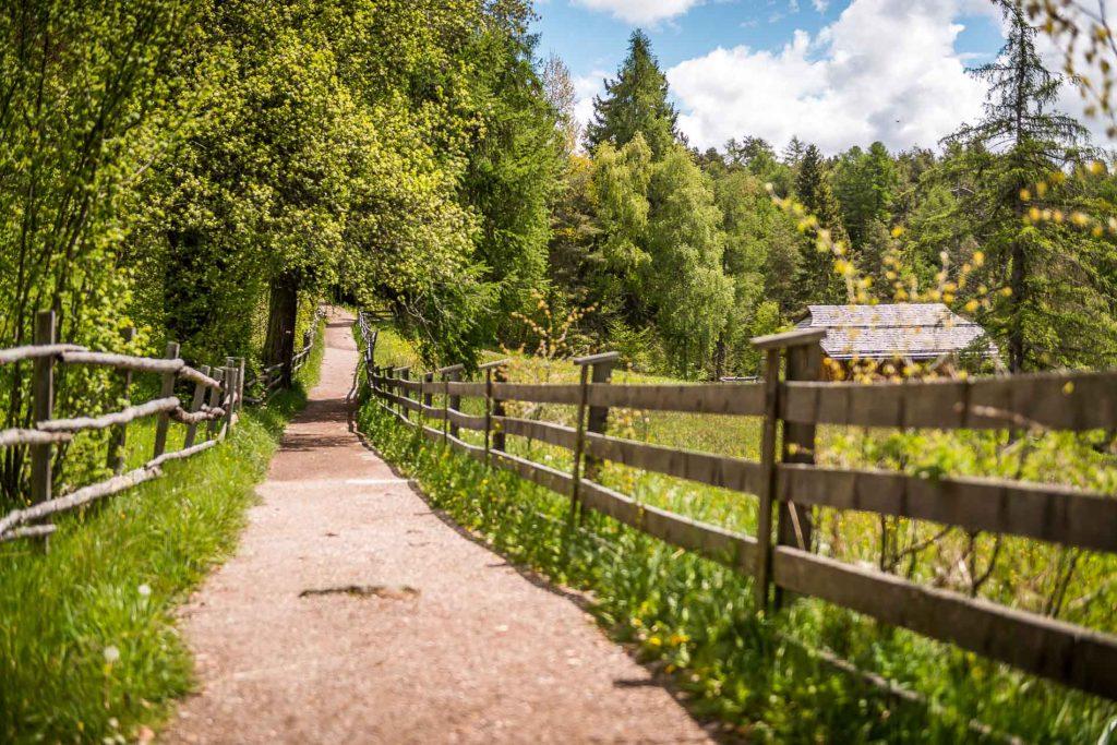 Il Sentiero di Freud - Renon - Foto di Achim Meurer