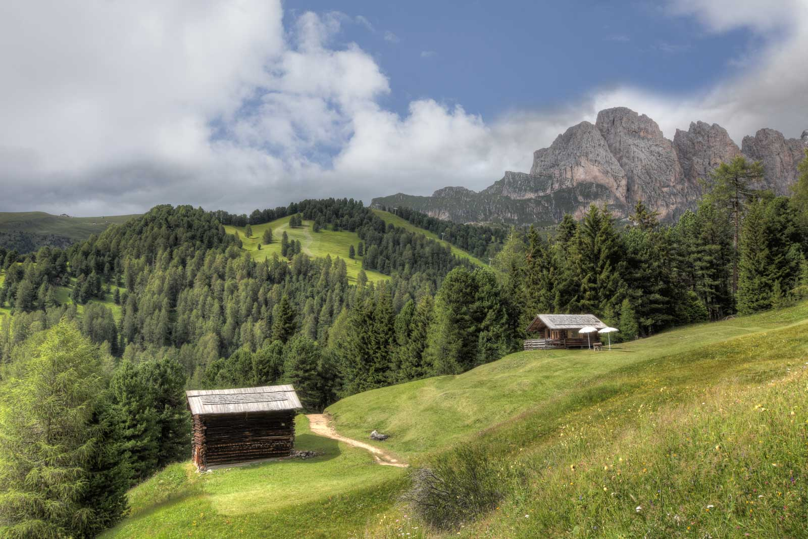 Hotel Tyrol Selva - Baita privata